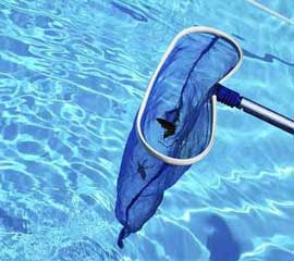 Silver Spring Pool Maintenance & Cleaning